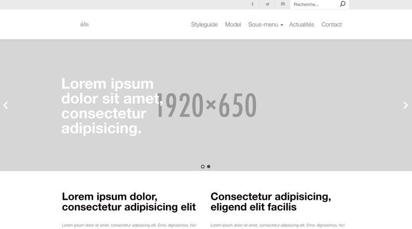 capture webpage skltn 1