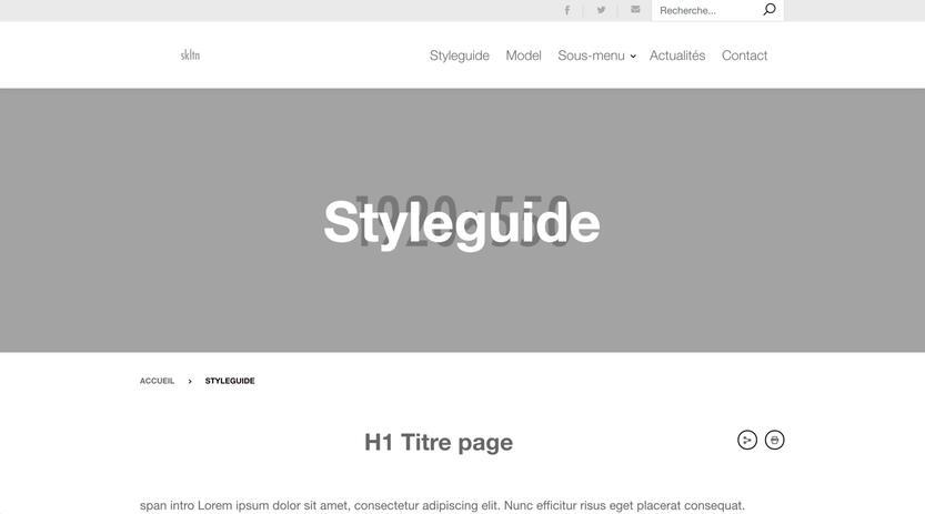 capture webpage skltn 2